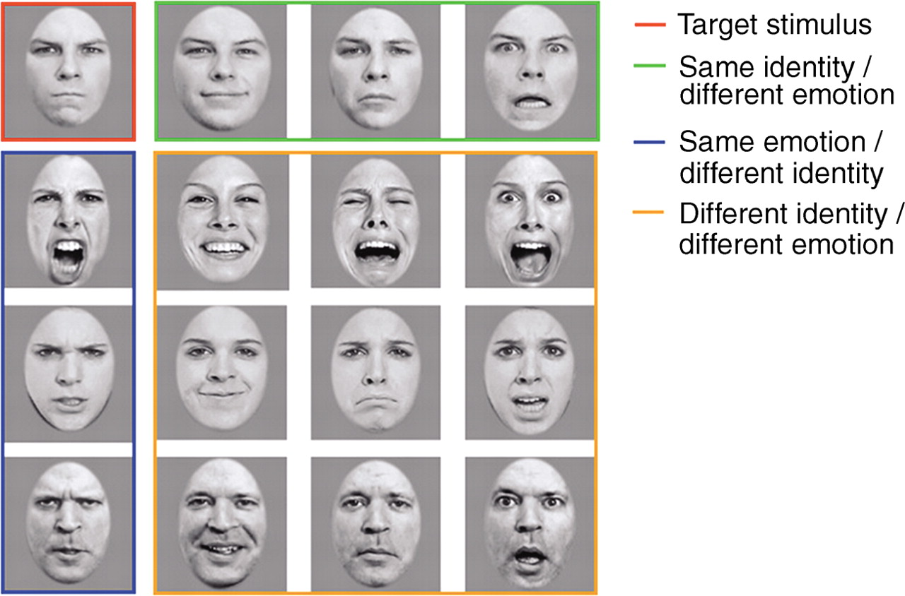 Facial emotion test