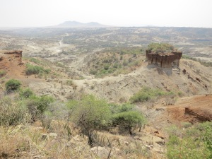 Olduvai Gorge – where some of the oldest human remains in existence have been unearthed.