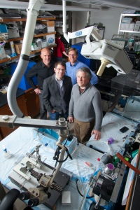 Michael Platt, director of the Duke Institute for Brain Sciences, Center for Cognitive Neuroscience; Warren Grill, professor of biomedical engineering, electrical and computer engineering, and neurobiology; Marc Sommer, associate professor of biomedical engineering and neurobiology; and Tobias Egner, assistant professor of psychology and neuroscience. Photo courtesy of Duke University.