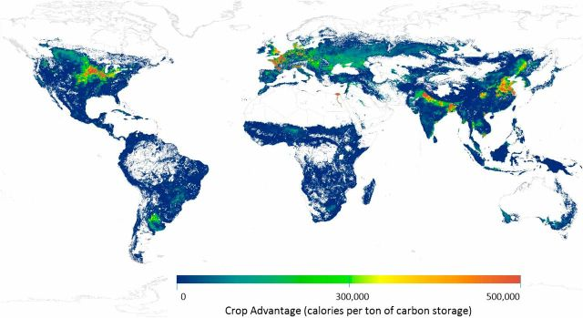 According to the study, the red areas would yield the most calories while preserving the most carbon; the green areas have the highest carbon storage potential and lowest yield potential.