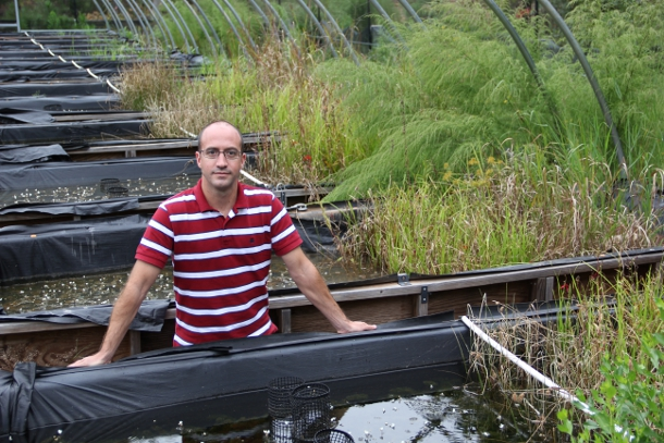 Nanotechnology researcher Lee Ferguson stands amid a collection of simulated wetlands called mescosms at Duke University. Each wetland-in-a-box is used to run the experiment under varying conditions. Credit Duke University.